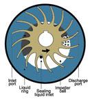 liquid ring vacuum pumps | how it works